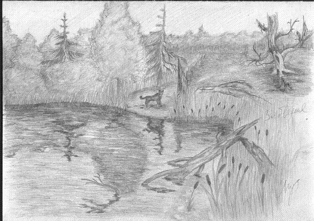 рисунки карандашом природа, Автор ...: tatu-msk.ru/risunki-karandashom-priroda.html